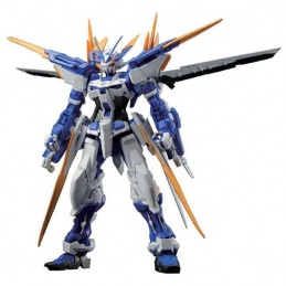Gundam Gunpla MG 1/100 Seed...